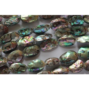 Baby Abalone 16-22mm