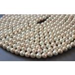 Shell pärlid, 8mm