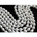 Shell pärlid, 10x13mm